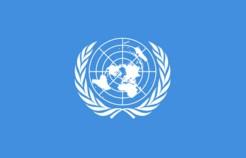 """""""الأمم المتحدة"""" تشيد بتجربة التحالف بقيادة المملكة في حماية أطفال اليمن"""