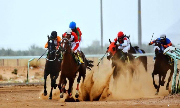 ميدان الفروسية بحائل يقيم حفل سباقه الـ 20 للموسم الحالي